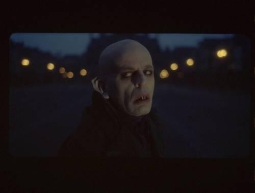 Nosferatu_032